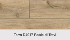 D4917 Roble di Trevi