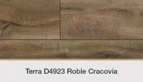 D4923 Roble Cracovia